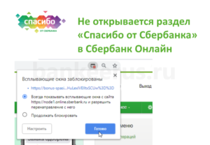 sberbank-spasibo-problem-open
