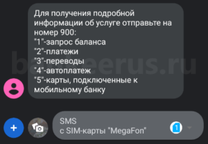 sberbank-sms-command-900-list-screenshot-8
