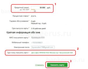 sberbank-credit-card-online-screenshot-3