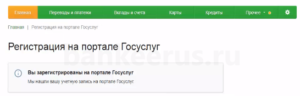 sberbank-online-gosuslugi-registration-screenshot-5