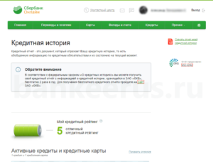 sberbank-denial-of-credit-reasons-screenshot-3