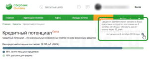 sberbank-credit-potential-screenshot-16