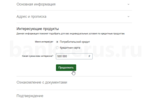sberbank-credit-potential-screenshot-6