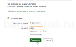 sberbank-credit-potential-screenshot-8