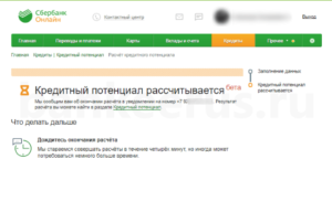 sberbank-credit-potential-screenshot-9
